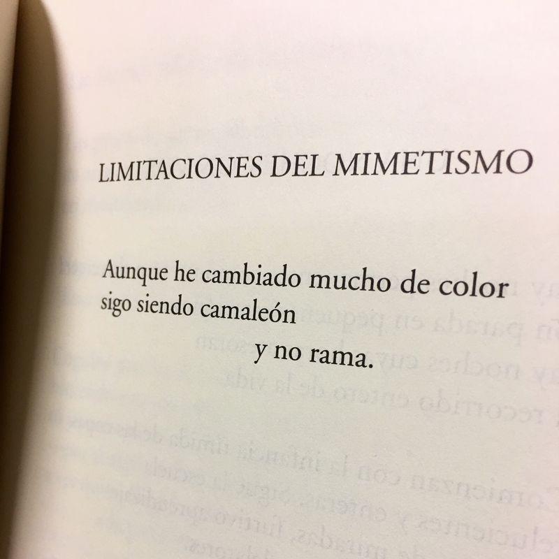 Poesía Raquel Lanseros